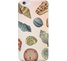 Seashell Pattern iPhone Case/Skin