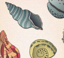 Seashell Pattern Sticker