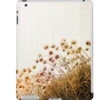 adagio (diptych) iPad Case/Skin