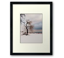 A Winter's Day at Lake Ontario-Canada Framed Print