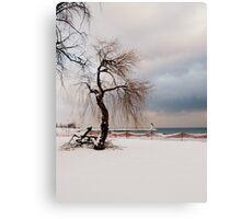 A Winter's Day at Lake Ontario-Canada Canvas Print