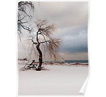 A Winter's Day at Lake Ontario-Canada Poster