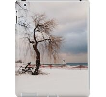 A Winter's Day at Lake Ontario-Canada iPad Case/Skin