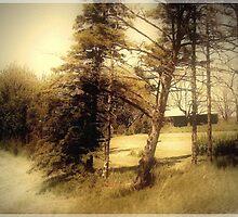Turning Spring Into Fall by Greta  McLaughlin