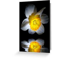 Reflection of a Daffodil Greeting Card
