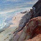Aldinga Cliffs - South Australia by Pieter  Zaadstra