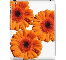 Flower triangle iPad Case/Skin