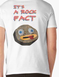 ROCKS Mens V-Neck T-Shirt