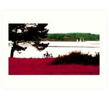 Regard de Breizh 5 Art Print