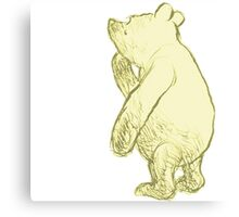 Silly Old Bear Textless Canvas Print