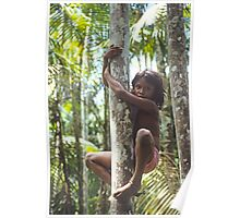 Climbing Trees Poster