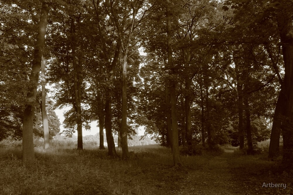 Woods, Bute Park Cardiff - Sepia toned BW by Artberry