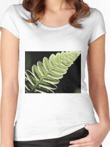 Veins In The Pinna Of A Fern Frond Women's Fitted Scoop T-Shirt