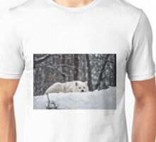 Dreams Of Warmer Weather Unisex T-Shirt