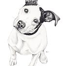 Rosco (Pit Mix) by Beth Thompson