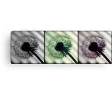 Three Wishes Before Blowing... Canvas Print