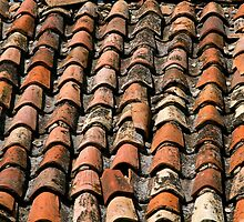tiled roof texture by vkph