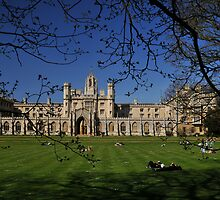 Studying the finer points of the lawn at St Johns (Cambridge)  by MarcW