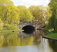 Riga Canal Bridge with Spring Tree Color by mikejohnson