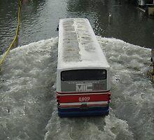Bus by nirdla19