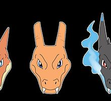 Charizard's Forms by FULIK8