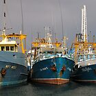 Fishing Boat Harbour by Stephen Horton