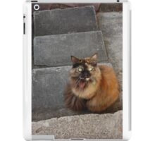 Curious Creature iPad Case/Skin