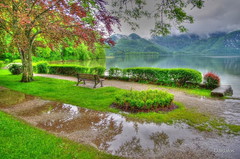 Rainy Day at Kochelsee by Daidalos