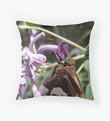 Silver Spangled Skipper in Buddleia Throw Pillow