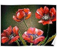 Flowers...Poppies Poster