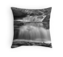 Seneca Falls (detail #1) Throw Pillow
