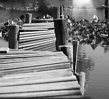 neglected dock by Ted Petrovits