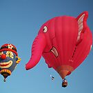 Clowning Around ! FLYING ELEPHANTS ! by Paul Albert