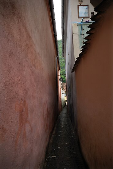 The narrowest street in Europe, Romania by Antanas