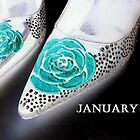 January Shoes by norakaren