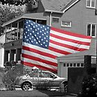 Large American Flag by Randy Mendelsohn