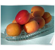 Dish of Delicious Apricots Poster