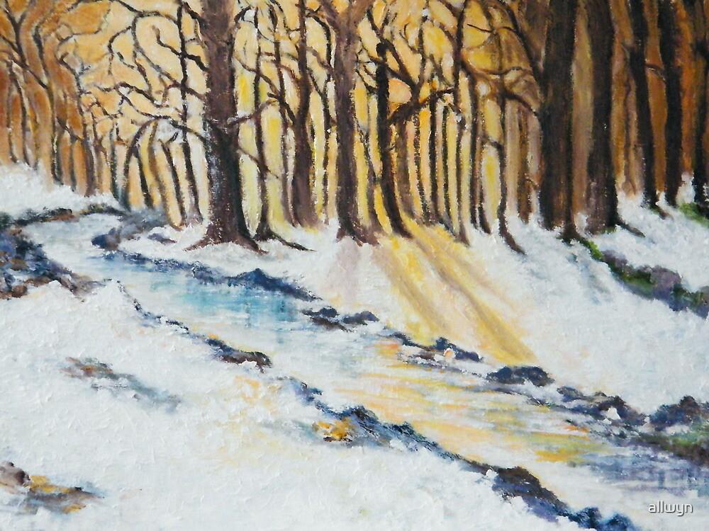 The Woods in Winter by allwyn