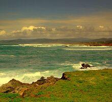 Mendocino Coast # 7, California by Ascender Photography