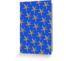Starfish Blue Greeting Card