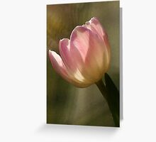 Heavenly Light Greeting Card