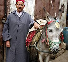 The Donkey Driver by Alison Howson