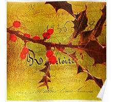Red Berries at Xmas Poster