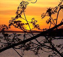 Northern Ontario Sunset by DavePlatt