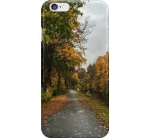 The Bike Path iPhone Case/Skin