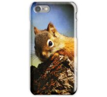 Baby Squirrel 2 iPhone Case/Skin