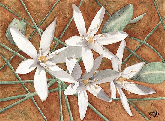 White Flowers by Ken Powers