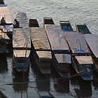 Luang Prabang Boats on the Mekong by lgusem