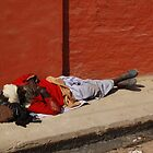 Bikaner Sleep by lgusem