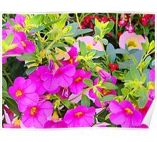 Spring Abundance Poster